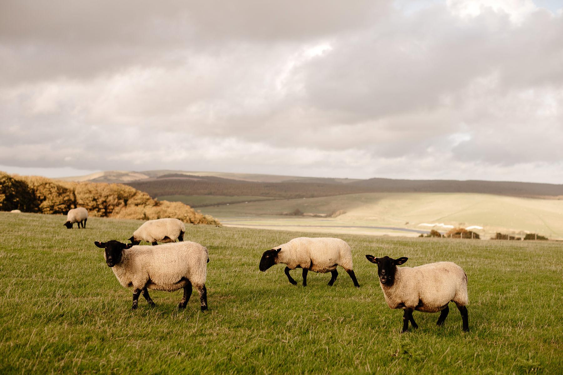 krajobrazy anglii
