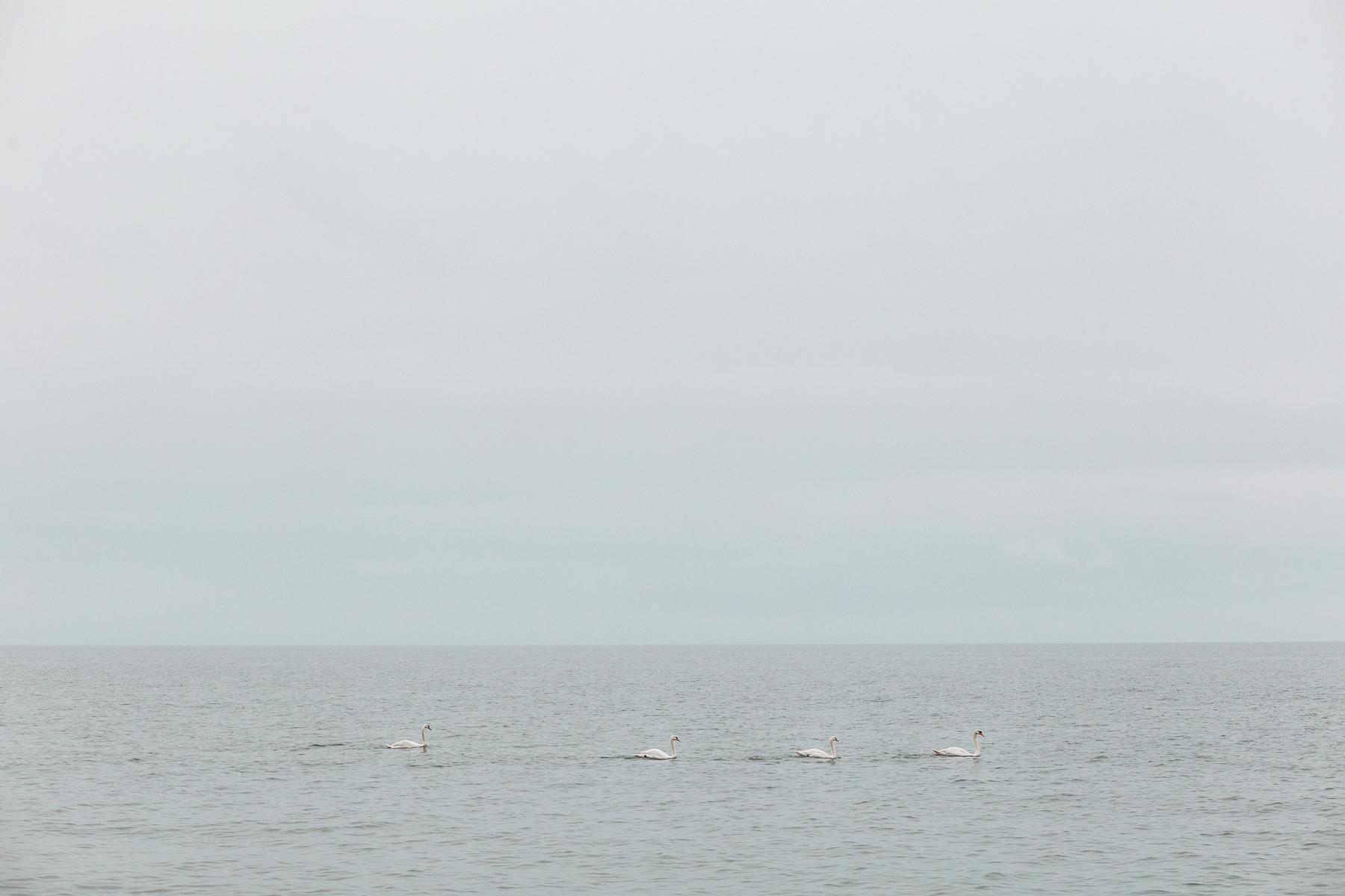 morze bałtyckie zdjęcia